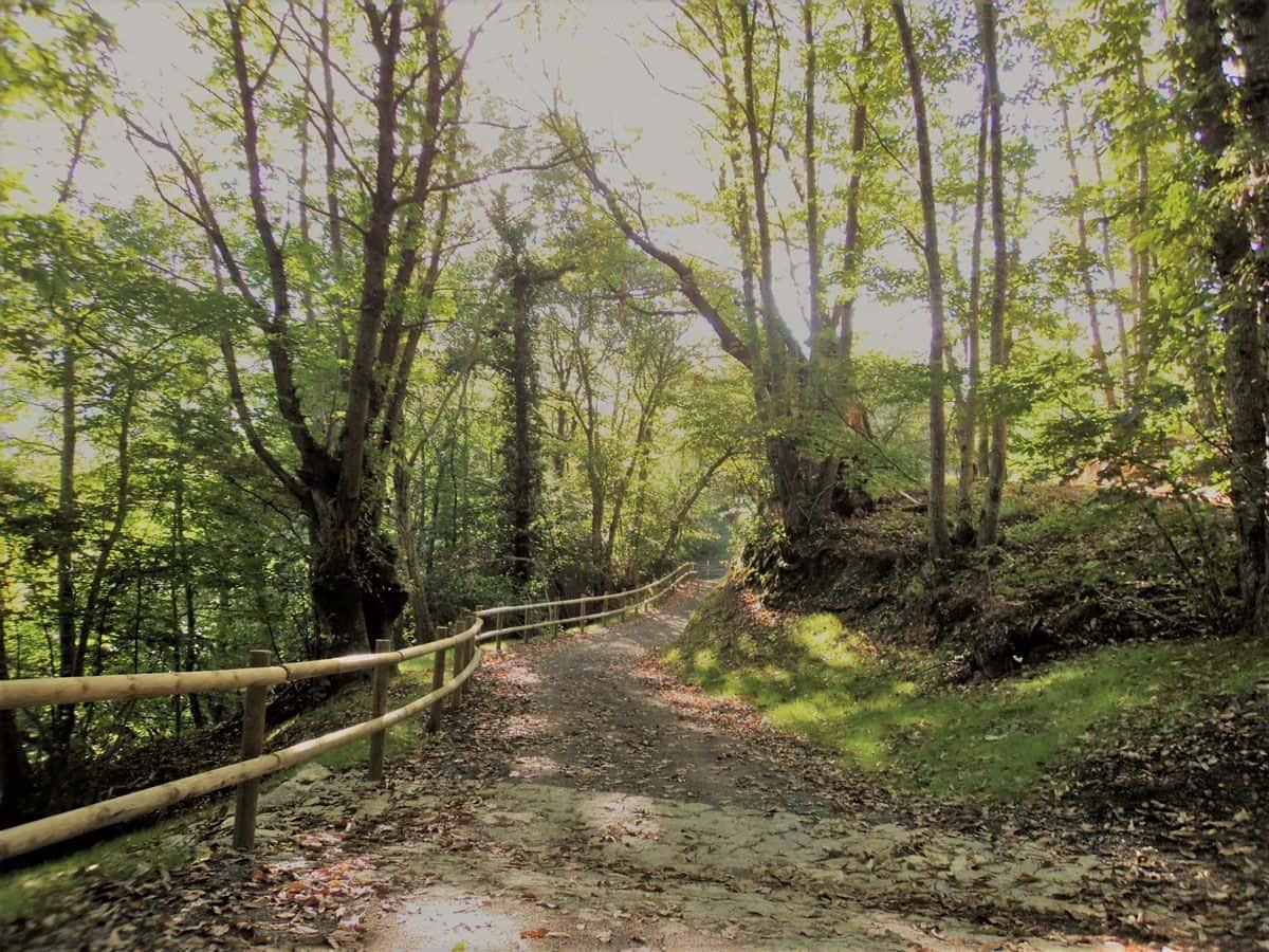Programa de caminos naturales
