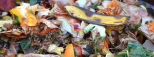 Residuos agroalimentarios