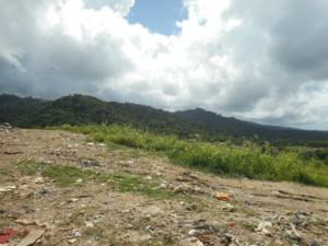 Trabajos relacionados con COP en Trinidad y Tobago